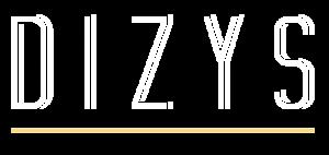 Dizys logo